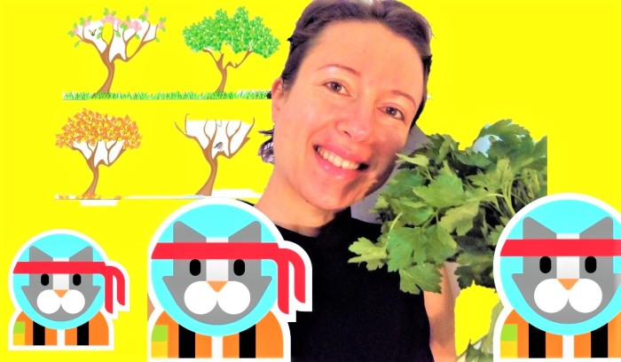 How to make it playful for our children to eat according to the seasons?