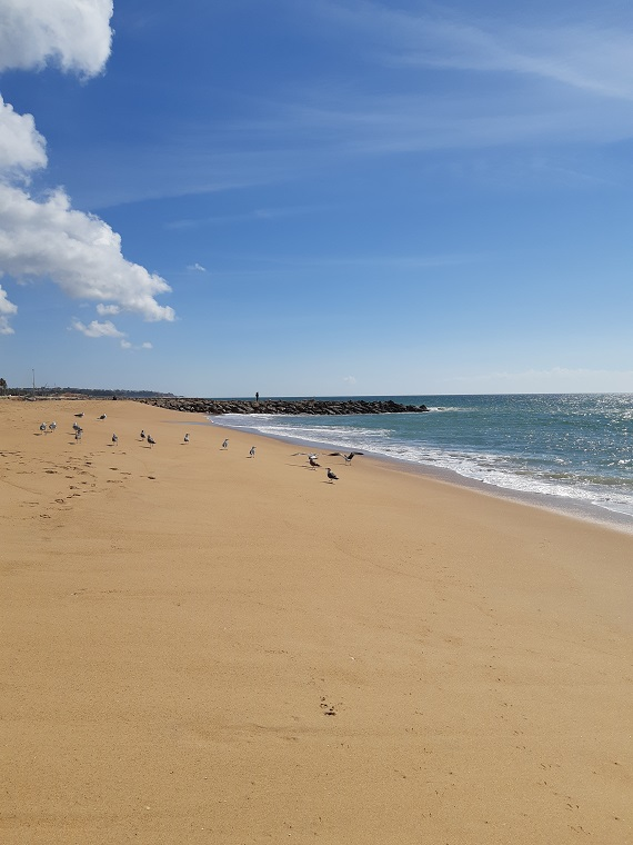 beach at quarteira in algarve portugal