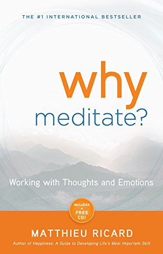 Why meditate Matthieu Ricard