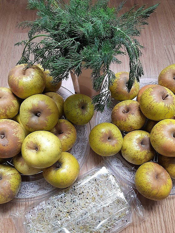 Apples #monomeals before a fast inspired by the book The clarity cleanse by Dr Habib Sadeghi