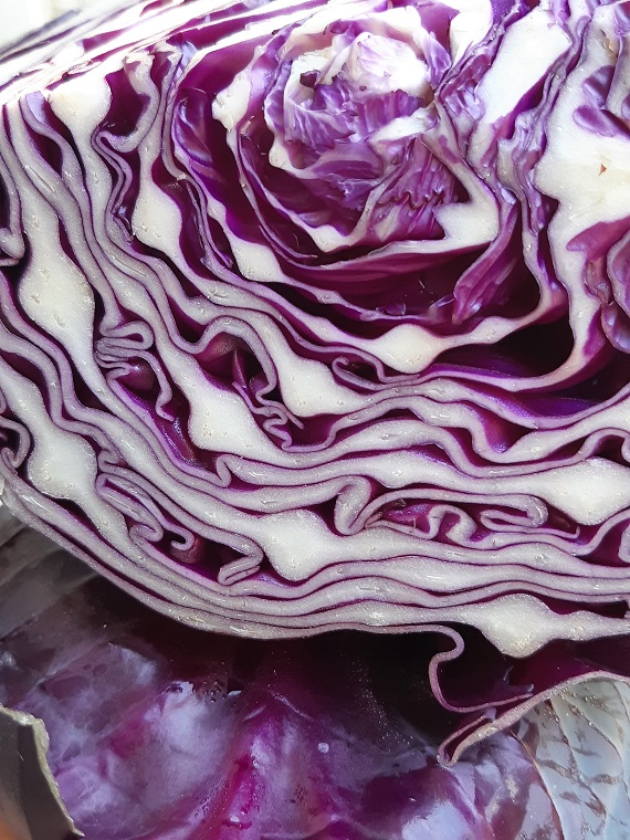 How to use red #cabbage and #sunflowerseeds ? savory #recipe